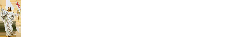 Архікатедральний і Митрополичий собор УГКЦ